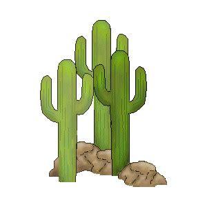 Essay on desert plants and animals